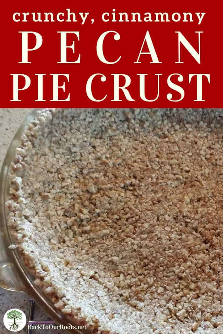 PECAN PIE CRUST RECIPE: You're gonna turn to this nut crust recipe again and again! It's perfect for anything you want to put in it, like cheesecake or pumpkin pie. Try it today!