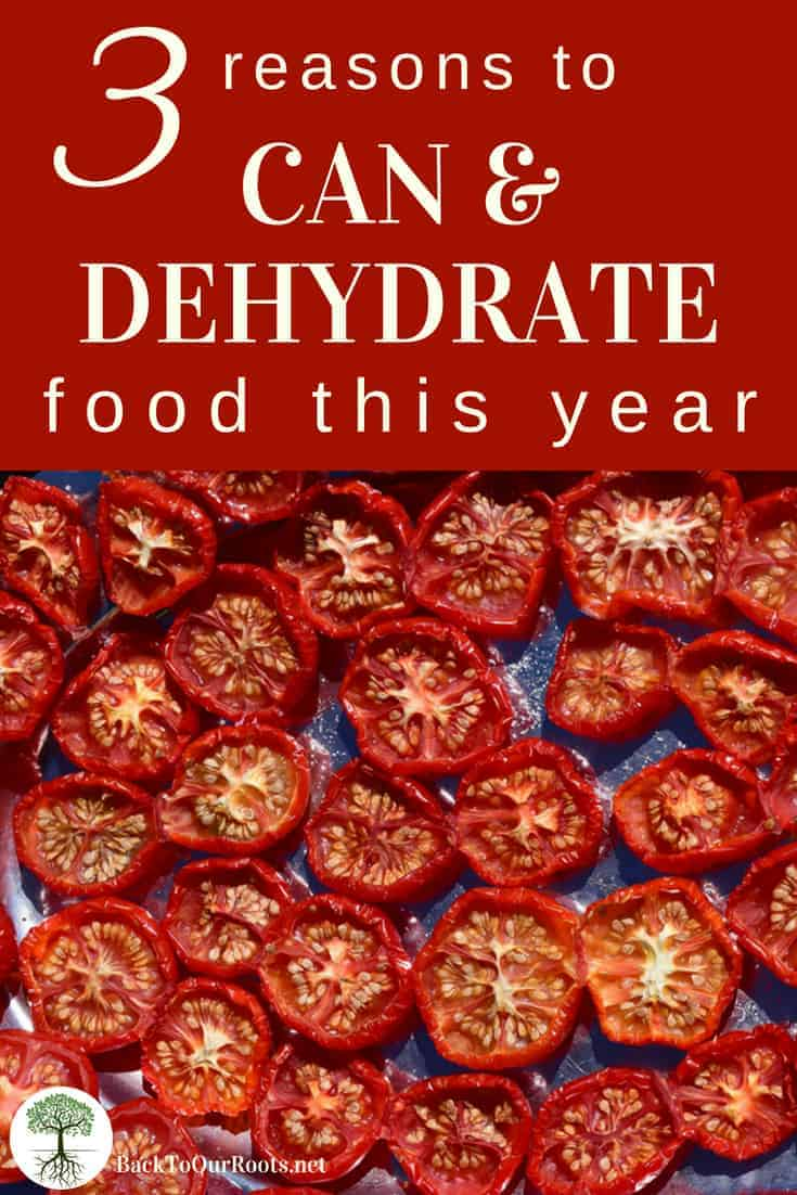 Why I Can & Dehydrate Food