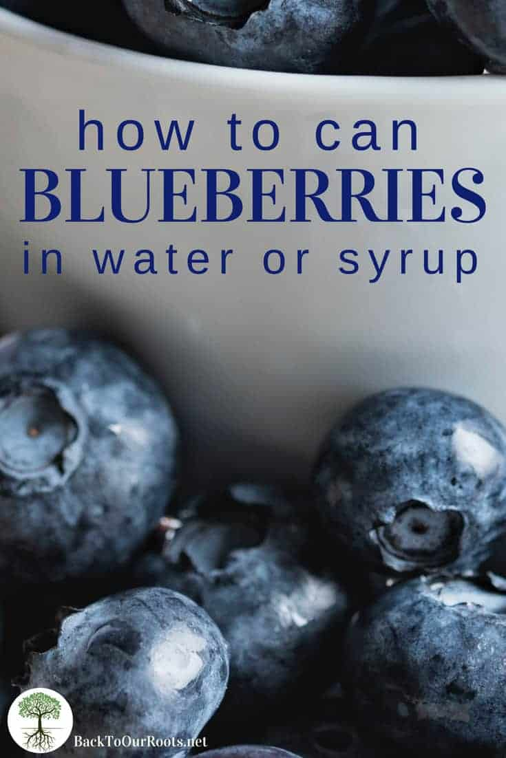 How to Can Blueberries