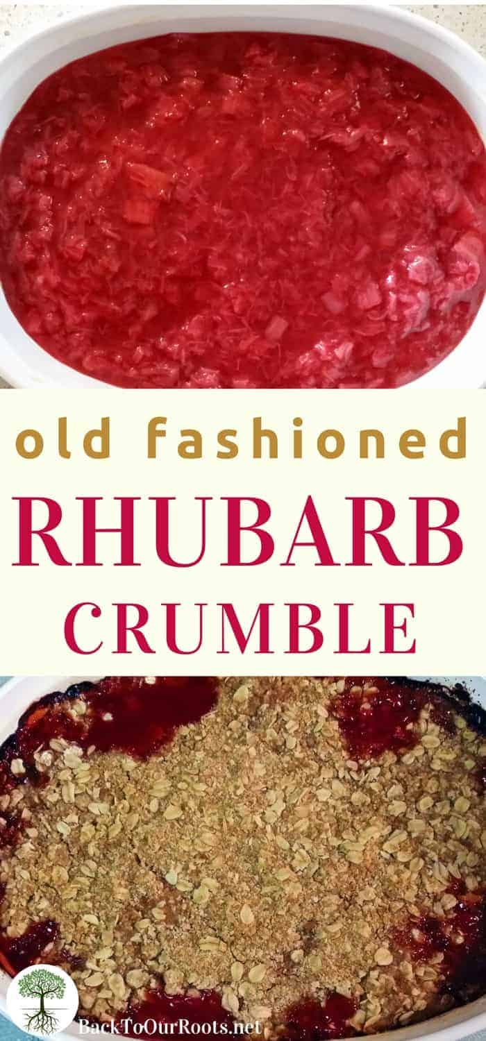 OLD-FASHIONED RHUBARB CRUMBLE RECIPE: You're gonna love this rhubarb crumble. It's so easy to make and it's packed with old-fashioned goodness. Make it tonight and share the love!