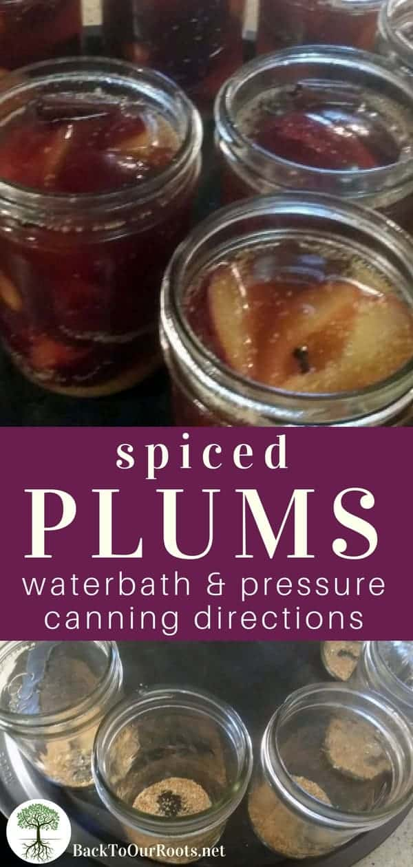 Spiced Plums Waterbath & Pressure Canning