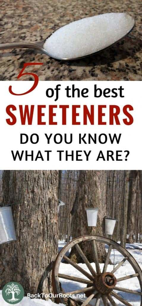 Types of Sweeteners and Their Nutritional Value
