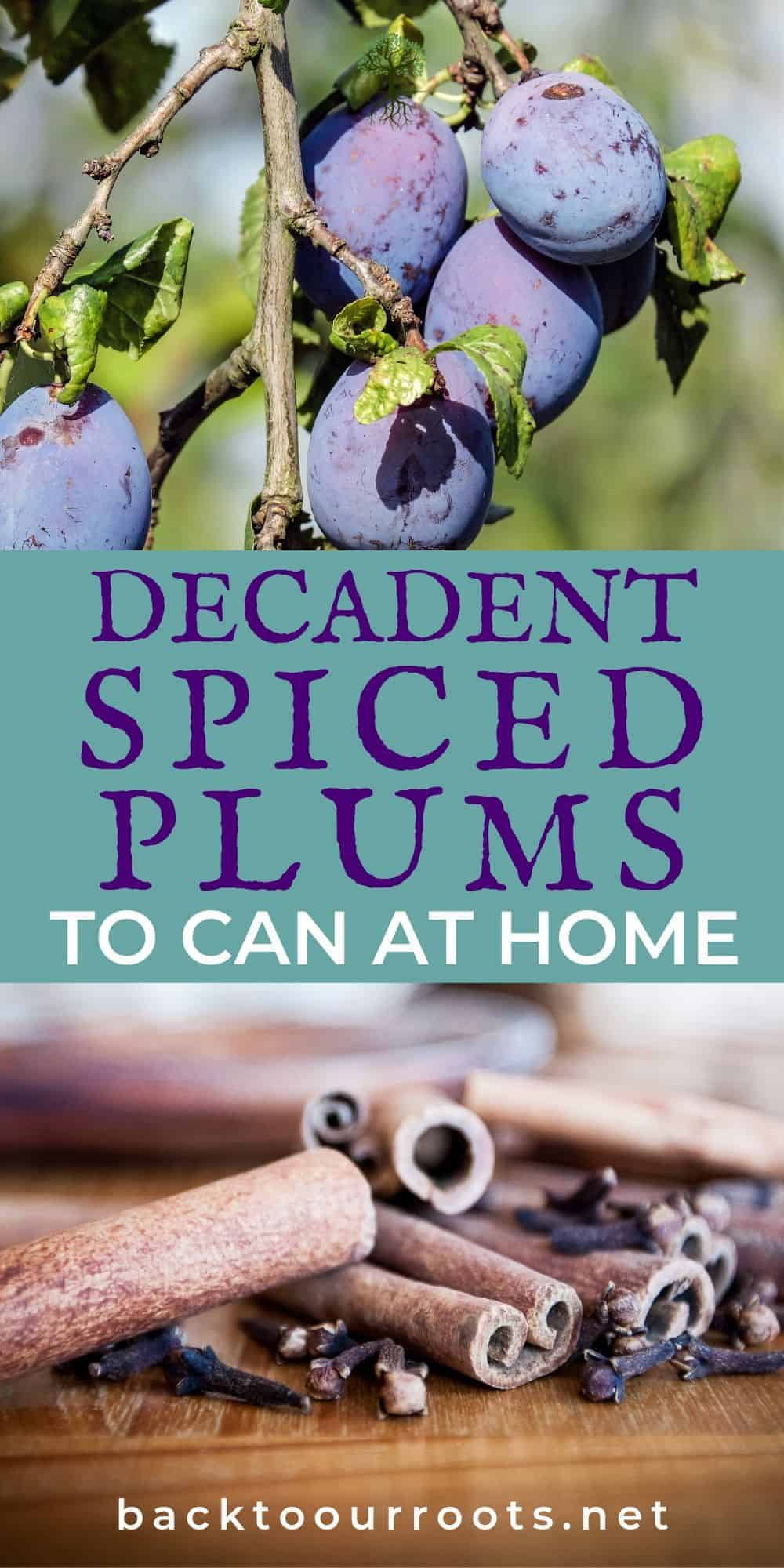 How to Can Spiced Plums