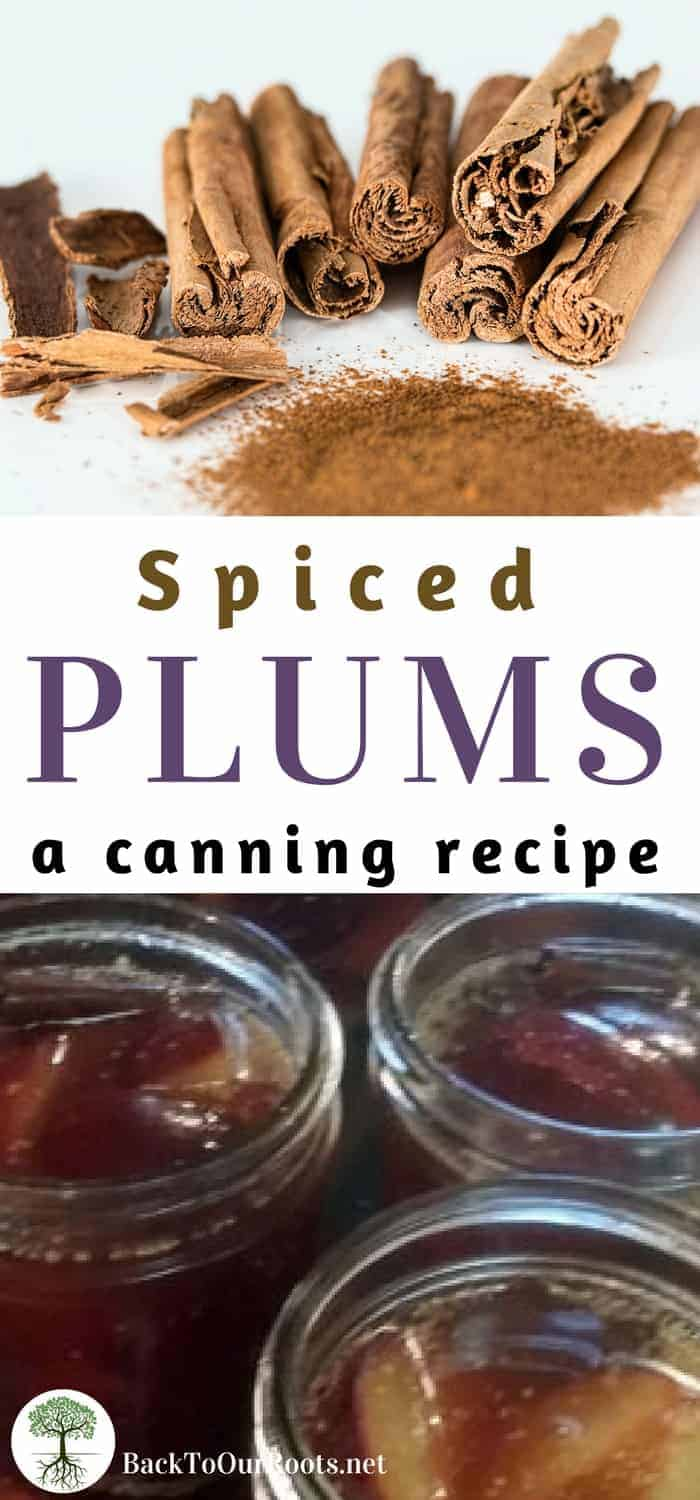 Canning Spiced Plums