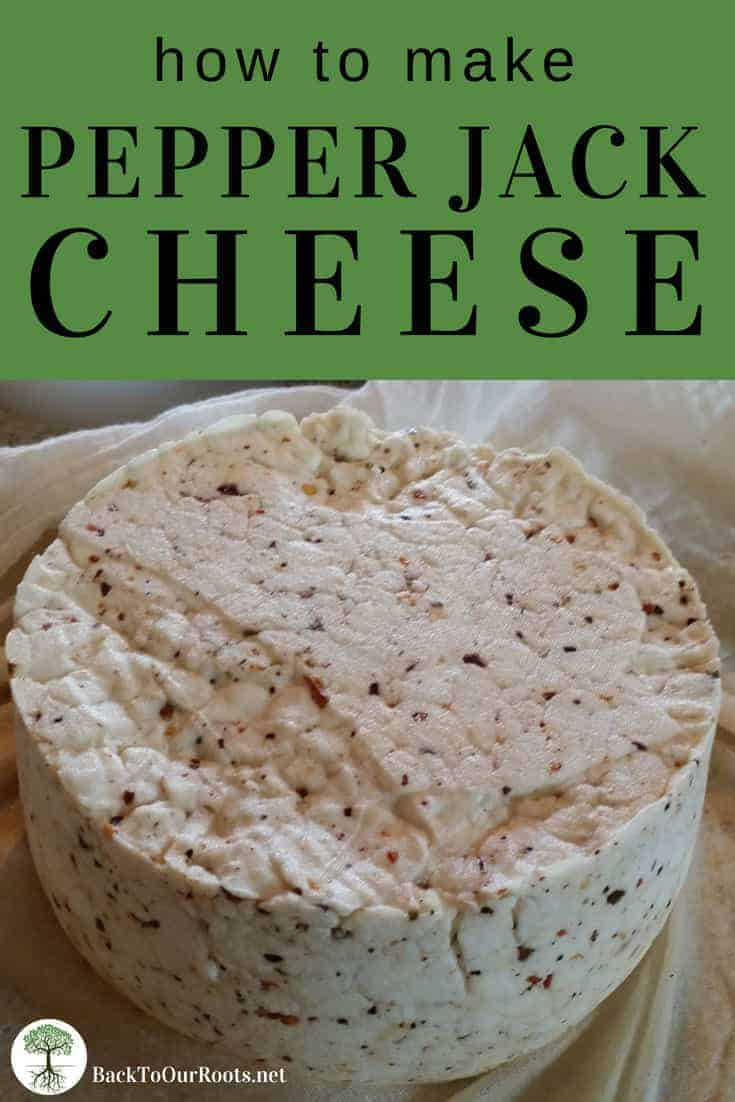 How to Make Pepper Jack Cheese