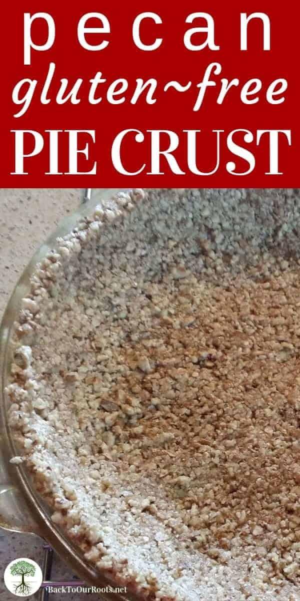 Gluten Free Pecan Pie Crust