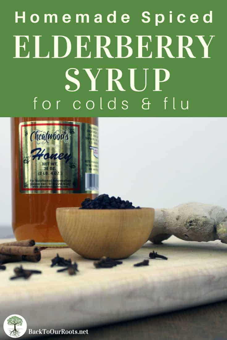 ELDERBERRY SYRUP RECIPE: Elderberry syrup has been used for centuries for colds and flu. This simple, spiced elderberry syrup recipe is a great addition to your natural medicine chest.