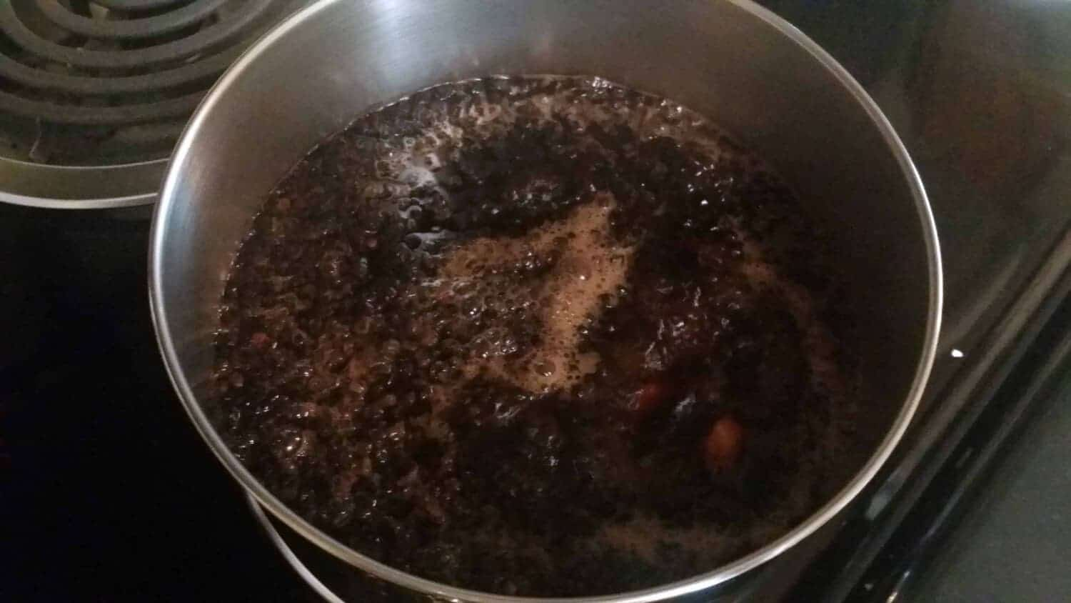 Elderberry Syrup at a full rolling boil