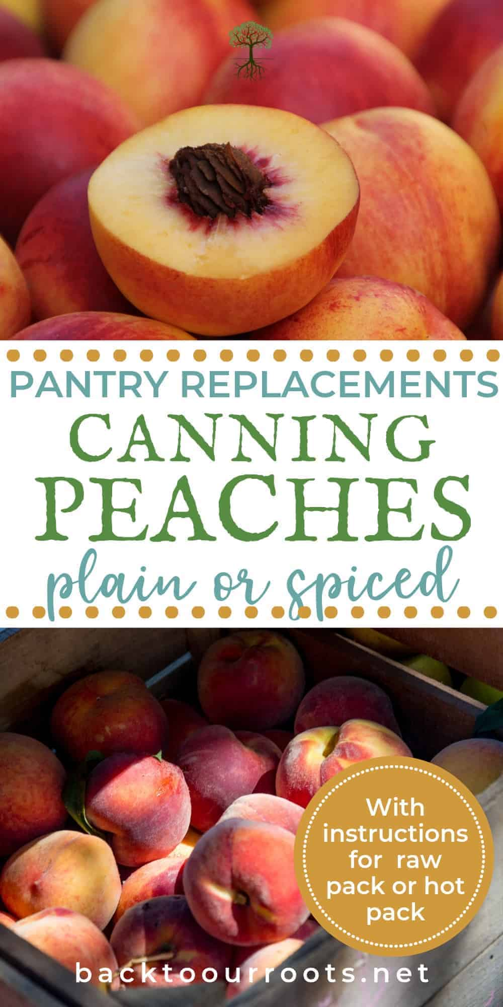 Beginner's Guide to Canning Peaches