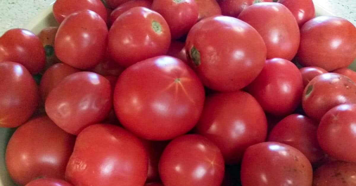 How to Can Tomatoes 2 Ways