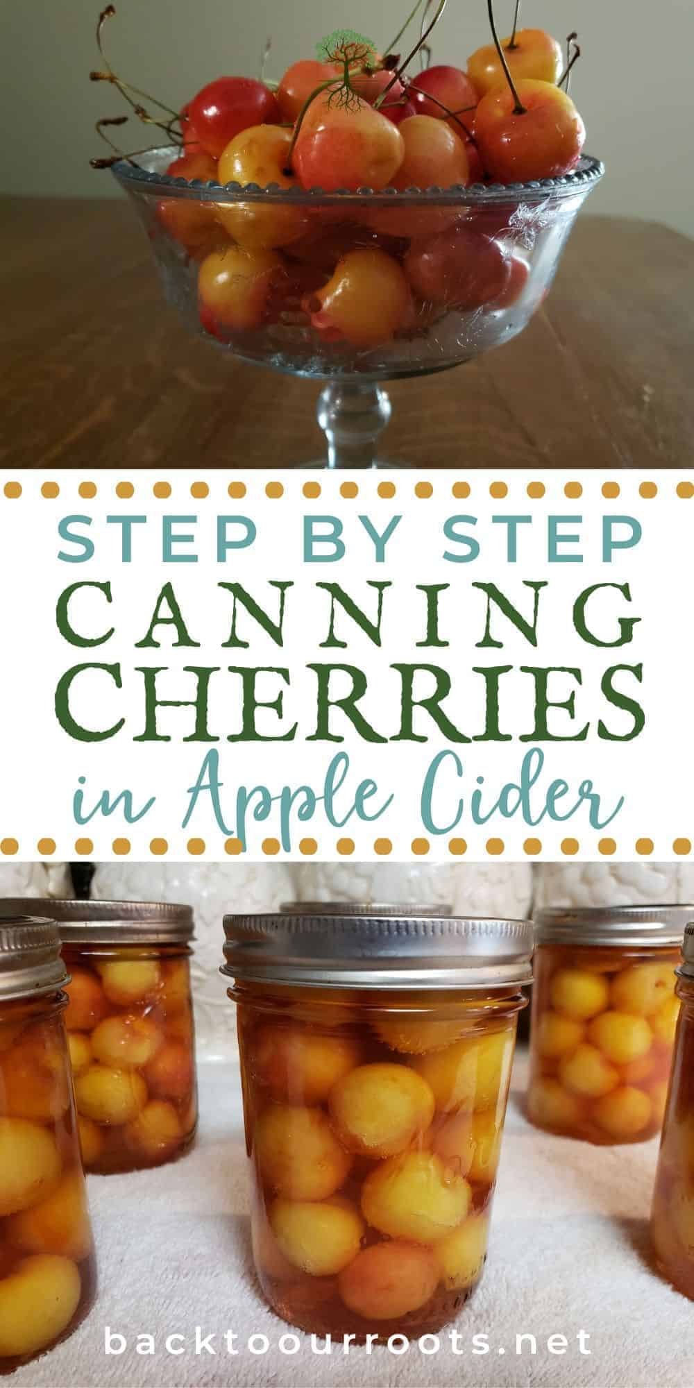 Canning Cherries on Apple Cider
