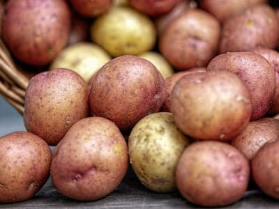Red and white potatoes in a basket