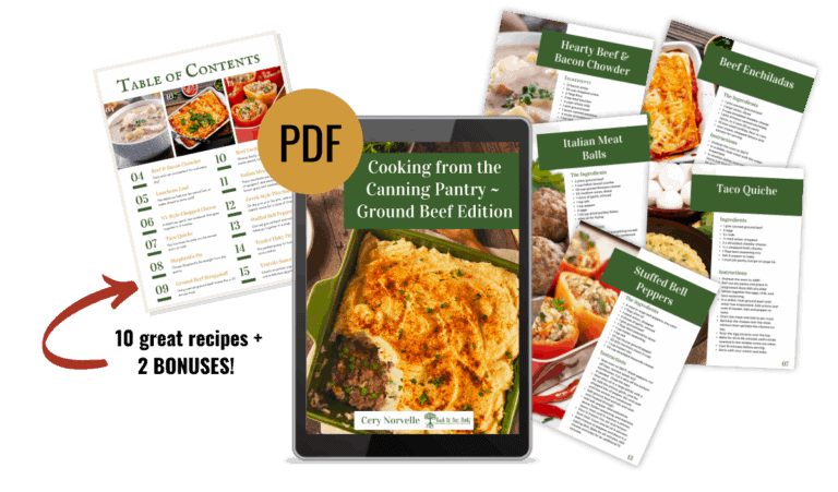 sample pages from hamburger ebook
