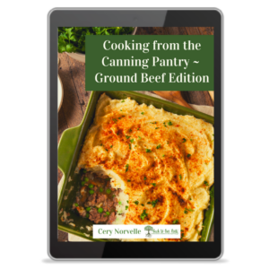 Ground Beef eBook Cover