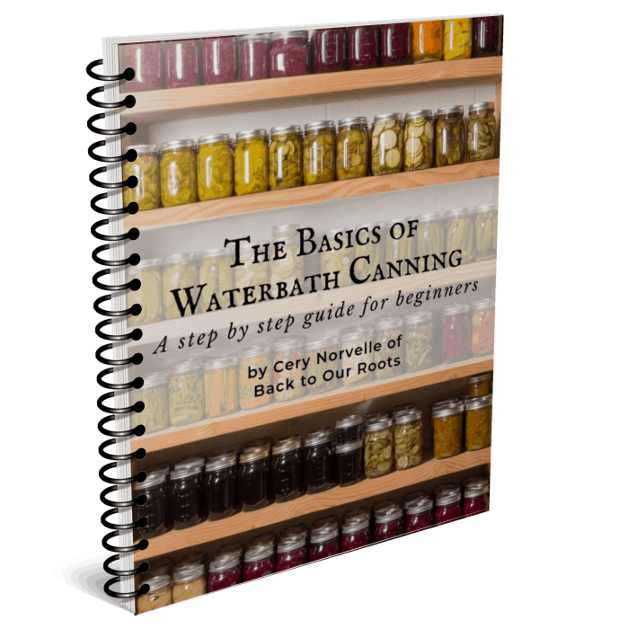 The Basics of Waterbath Canning Book Cover Mockup